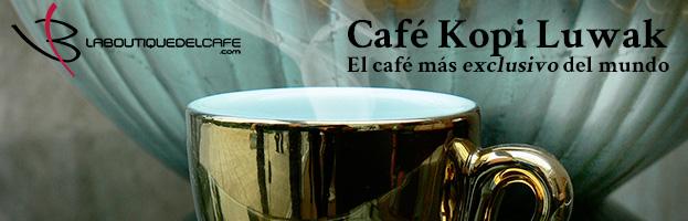 Café Kopi Luwak, el más exclusivo del mundo